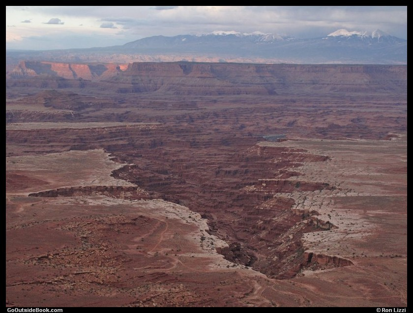 Buck Canyon viewed from Buck Canyon Overlook - Canyonlands National Park, Utah