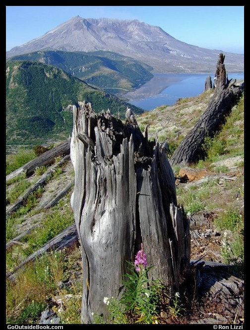 Independence Pass Trail 2 - Mount St. Helens
