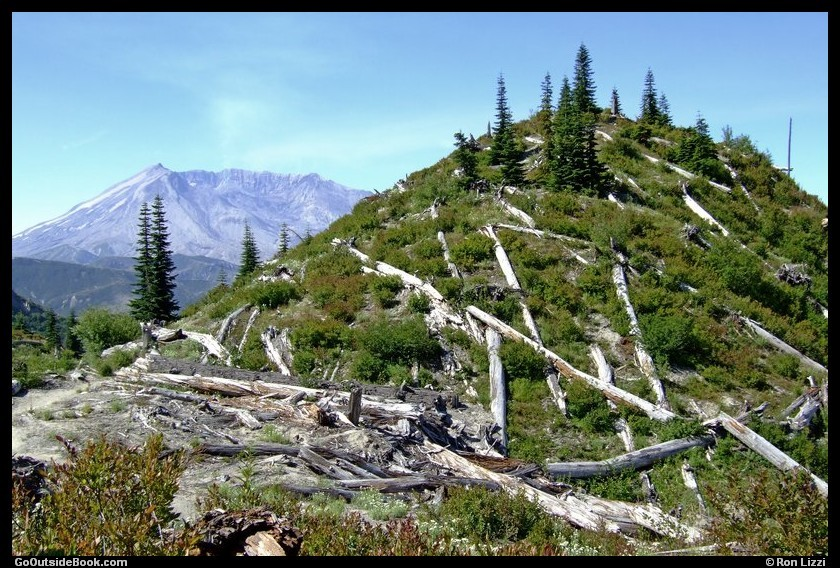Independence Pass Trail 8 - Mount St. Helens