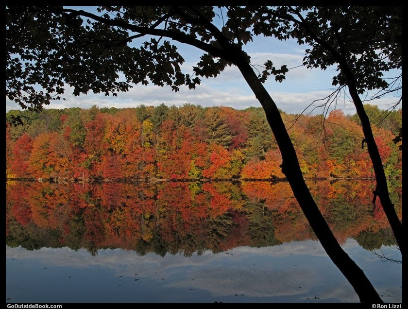 Fall foliage reflection in Naugatuck State Forest, Connecticut