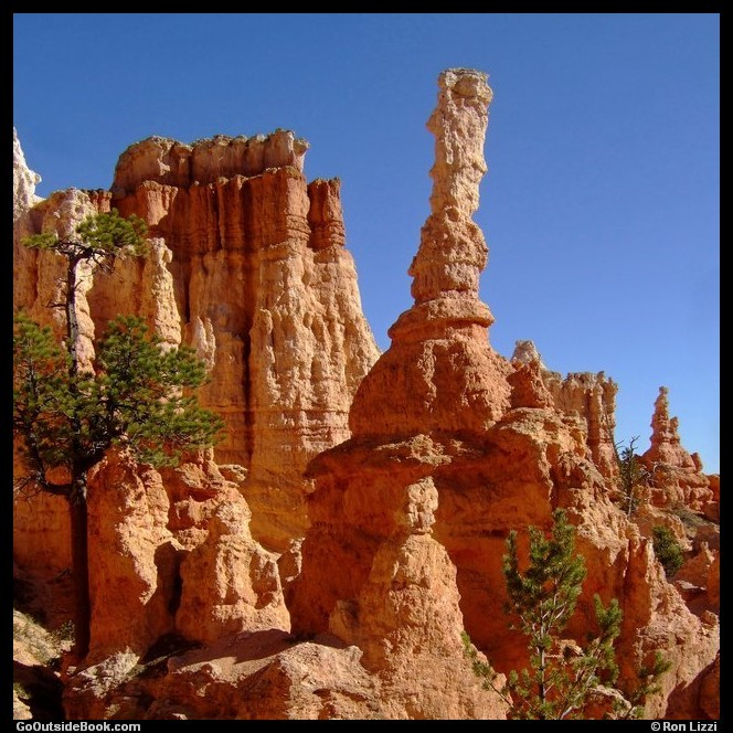 Bryce Temple and hoodoos