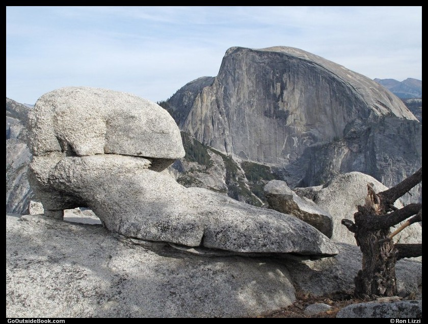 Half Dome and shoe-like rock viewed from North Dome, Yosemite National Park, California